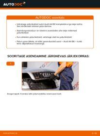 Kuidas välja vahetamist läbi viia: 1.9 TDI Audi A4 b6 Piduriketas
