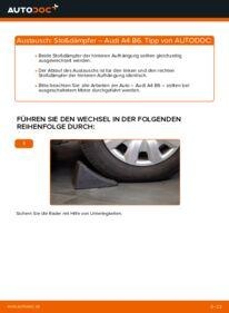Wie der Wechsel durchführt wird: Stoßdämpfer 1.9 TDI Audi A4 b6 tauschen