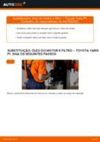 Recomendações do mecânico de automóveis sobre a substituição de TOYOTA Toyota Yaris p1 1.4 D-4D (NLP10_) Correia Trapezoidal Estriada