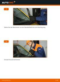 Wie der Wechsel durchführt wird: Scheibenwischer 1.0 (SCP10_) Toyota Yaris P1 tauschen