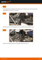 BMW X5 Wartungsanleitung