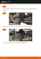 Cómo cambiar y ajustar Filtro habitáculo BMW X5: tutorial pdf