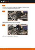 Instrukcja warsztatu dla BMW X5 (G05)