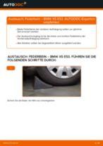 Reparatur- und Wartungshandbuch für BMW X5 Van (G05)