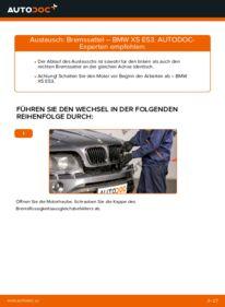 Wie der Wechsel ausgeführt wird: Bremssattel beim BMW X5