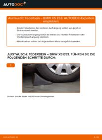 Wie der Wechsel durchführt wird: Stoßdämpfer BMW E53 3.0 d 3.0 i 4.4 i tauschen