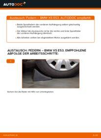 Wie der Wechsel durchführt wird: Federn 3.0 d BMW E53 tauschen