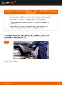 Wie der Wechsel durchführt wird: Ölfilter C 180 1.8 (202.018) Mercedes W202 tauschen