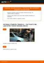 Instrukcijos PDF apie PUNTO priežiūrą