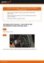 Kaip pakeisti Fiat Punto 188 dyzelis rato guolio: priekis - keitimo instrukcija