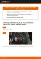 Seat Ibiza 6k Ašies montavimas pakeisti: žinynai pdf