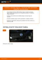 Fiat Ducato 244 online vadovas