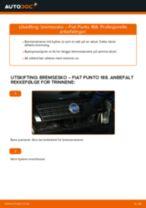 Bytt Glødelampe Nummerskiltlys i VW SHARAN – tips og triks