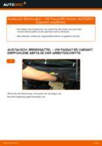 KIA Stinger Kasten / Schrägheck (CK) Federbein: Online-Tutorial zum selber Austauschen