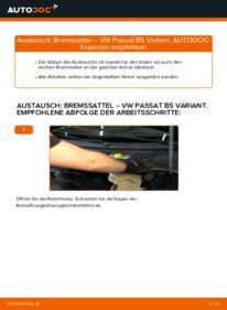 Wie der Wechsel durchführt wird: Bremssattel 1.9 TDI Passat 3B6 tauschen