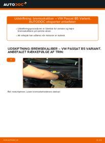 Hvordan man udfører udskiftning af: Bremsekaliber på 1.9 TDI Passat 3B6