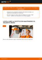 Recomendaciones de mecánicos de automóviles para reemplazar Bujías de Precalentamiento en un OPEL Opel Corsa D 1.2 (L08, L68)