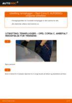 Hvordan bytte og justere Gassfjær bakluke OPEL CORSA: pdf håndbøker