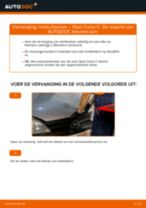 Hoe Fuseekogel Hyundai Santa FE DM kunt vervangen - tutorial online