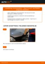 Trin-for-trin reparationsvejledning til OPEL VIVARO Combi