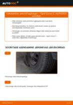 Kuidas vahetada Opel Corsa C bensiin esi-amordi tugilaager – õpetus