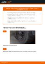 Automehāniķu ieteikumi OPEL Opel Corsa C 1.0 (F08, F68) Degvielas filtrs nomaiņai