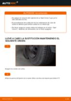 Cambio Juego de cojinete de rueda delantera izquierda derecha OPEL bricolaje - manual pdf en línea