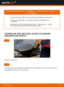 Wie der Wechsel durchführt wird: Ölfilter 1.2 (F08, F68) Opel Corsa C tauschen