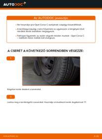 Hogyan végezze a cserét: 1.2 (F08, F68) Opel Corsa C Kerékcsapágy