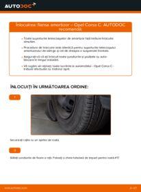 Cum să efectuați înlocuirea: Flansa Amortizor la 1.2 (F08, F68) Opel Corsa C