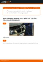 Step by step PDF-tutorial on Anti Roll Bar Bushes FORD GT replacement