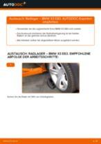 Einbau von Radlagersatz beim BMW X3 (E83) - Schritt für Schritt Anweisung