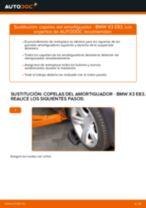 Tutorial de reparación y mantenimiento de BMW X3