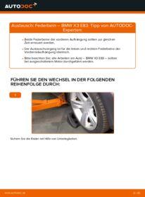 Wie der Wechsel durchführt wird: Stoßdämpfer 2.0 d BMW X3 E83 tauschen