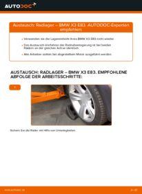 Wie der Wechsel durchführt wird: Radlager BMW X3 E83 2.0 d 3.0 d xDrive20d 2.0 tauschen