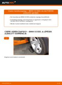 Hogyan végezze a cserét: 2.0 d BMW X3 E83 Kerékcsapágy
