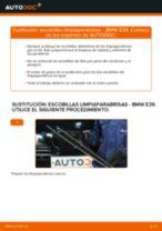 Cómo cambiar: escobillas limpiaparabrisas de la parte delantera - BMW E39 | Guía de sustitución