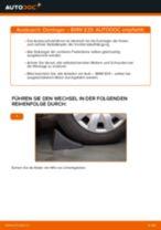 Wie BMW E39 Domlager vorne wechseln - Anleitung