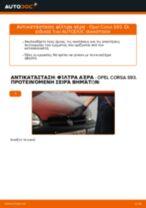Online εγχειρίδιο για να αλλάξετε Καπό σε Skoda Roomster Praktik