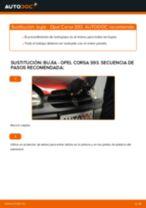 Tutorial de reparación y mantenimiento de Opel Combo D Tour