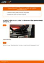 Manuell PDF för COMBO underhåll