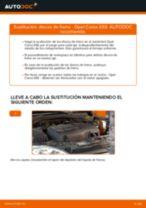 Cómo cambiar: discos de freno de la parte delantera - Opel Corsa S93 | Guía de sustitución