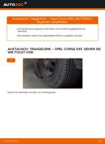 Wie der Wechsel durchführt wird: Traggelenk 1.0 i 12V (F08, F68, M68) Opel Corsa B tauschen