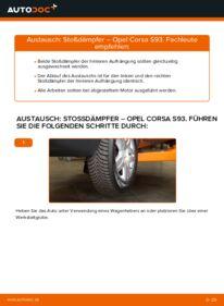 Wie der Wechsel durchführt wird: Stoßdämpfer 1.0 i 12V (F08, F68, M68) Opel Corsa B tauschen