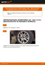 Δωρεάν οδηγίες για Σύστημα ελέγχου δυναμικής κίνησης BMW X3 (E83) αλλάξετε
