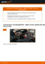 BMW X3 Wartungsanweisung
