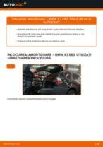 Cum se înlocuiesc și se ajustează Amortizor sport BMW X3: manual pdf