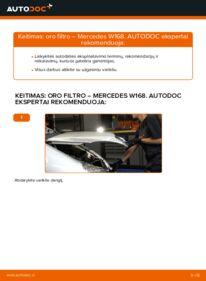 Kaip atlikti keitimą: A 140 1.4 (168.031, 168.131) Mercedes W168 Oro filtras