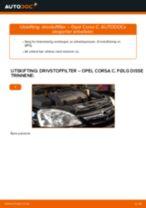Mekanikerens anbefalinger om bytte av OPEL Opel Corsa D 1.2 (L08, L68) Glødeplugger