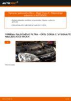 Odporúčania od automechanikov k výmene OPEL Opel Meriva x03 1.6 16V (E75) Brzdový kotouč